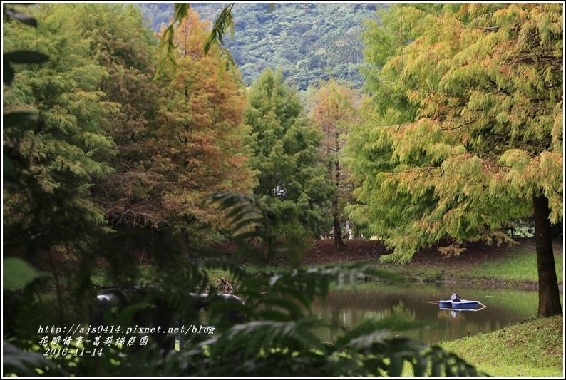 葛莉絲莊園落羽松-2016-11-15.jpg
