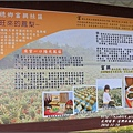 富興村鳳梨公園-2016-11-04.jpg