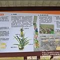 富興村鳳梨公園-2016-11-05.jpg