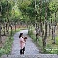 富興村鳳梨公園-2016-11-23.jpg