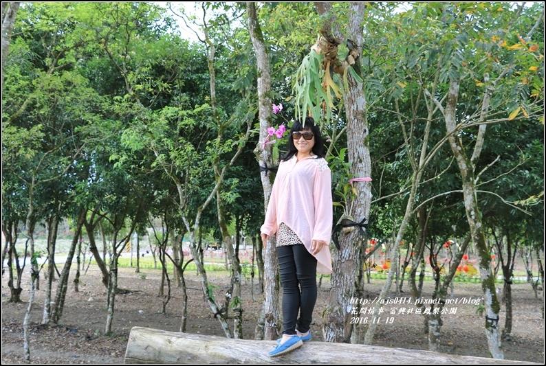 富興村鳳梨公園-2016-11-25.jpg
