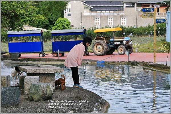 富興村鳳梨公園-2016-11-27.jpg