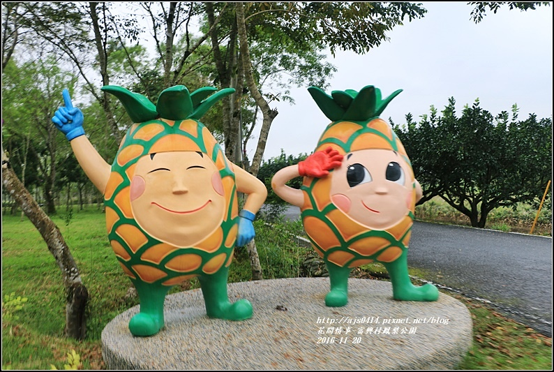 富興村鳳梨公園-2016-11-56.jpg
