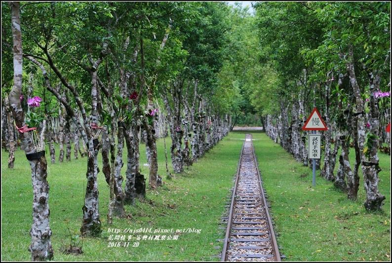 富興村鳳梨公園-2016-11-64.jpg