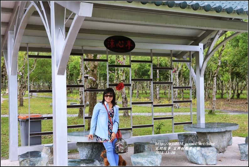 富興村鳳梨公園-2016-11-75.jpg