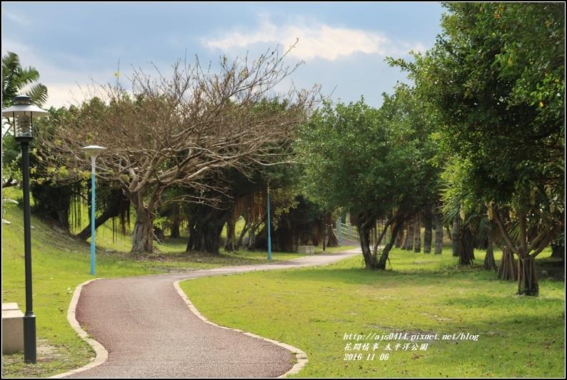 太平洋公園-2016-11-24.jpg