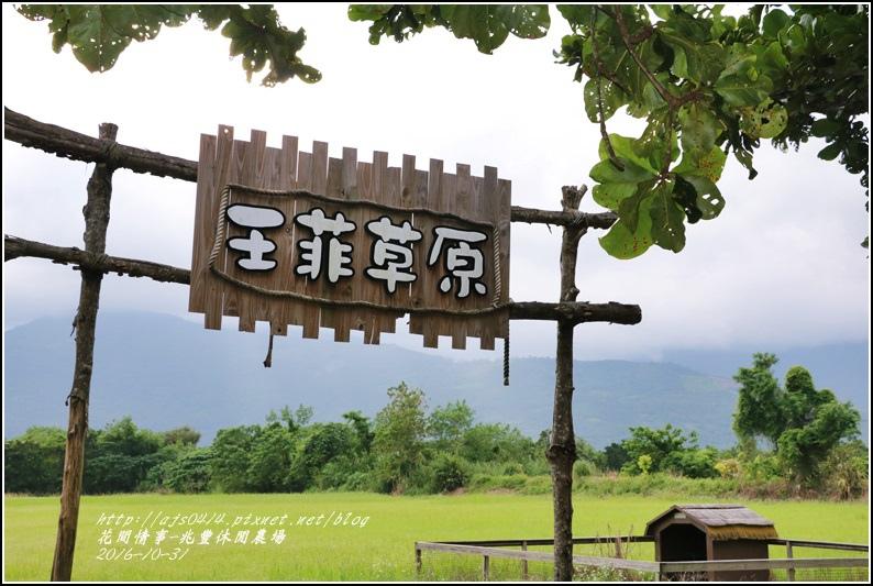 兆豐休閒農場-2016-10-60.jpg