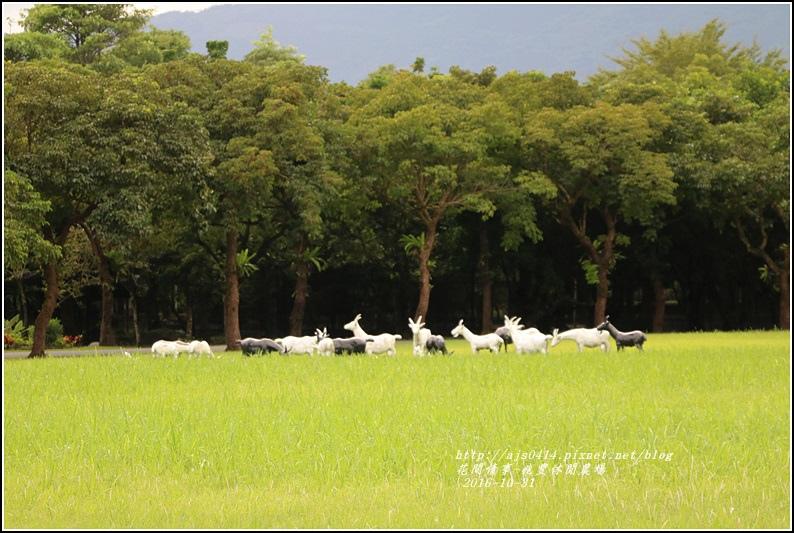 兆豐休閒農場-2016-10-89.jpg