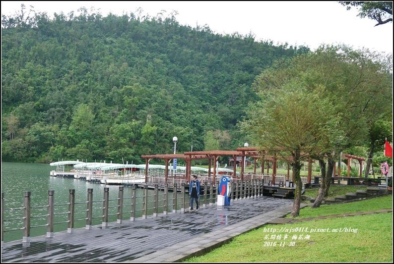 湖花湖-2016-11-03.jpg