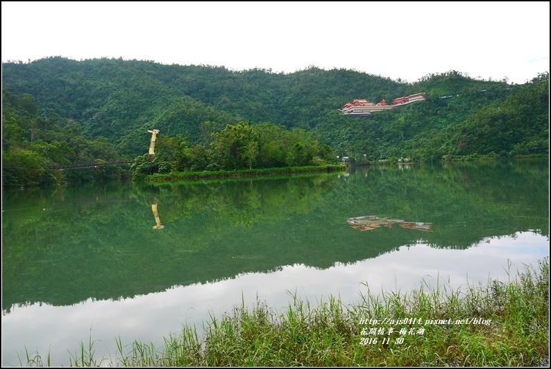 湖花湖-2016-11-11.jpg