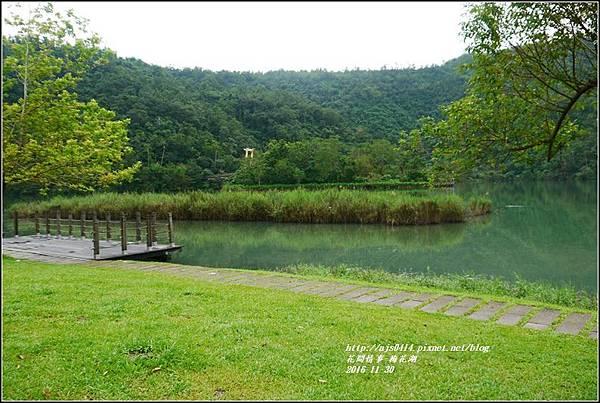 湖花湖-2016-11-14.jpg