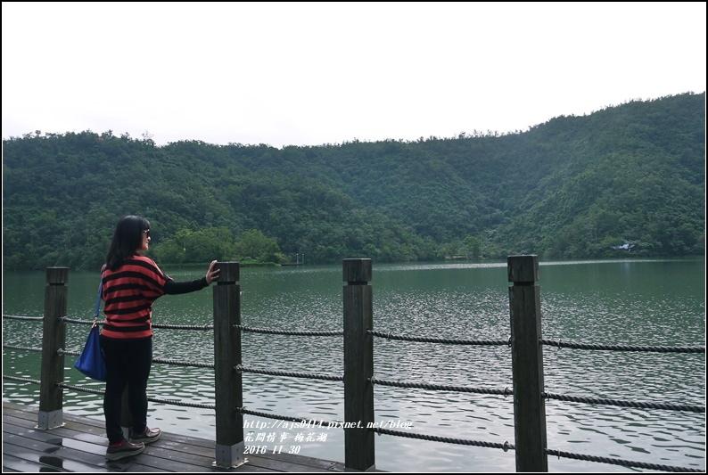 湖花湖-2016-11-20.jpg