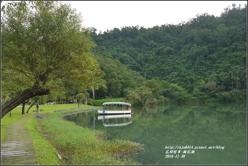湖花湖-2016-11-21.jpg