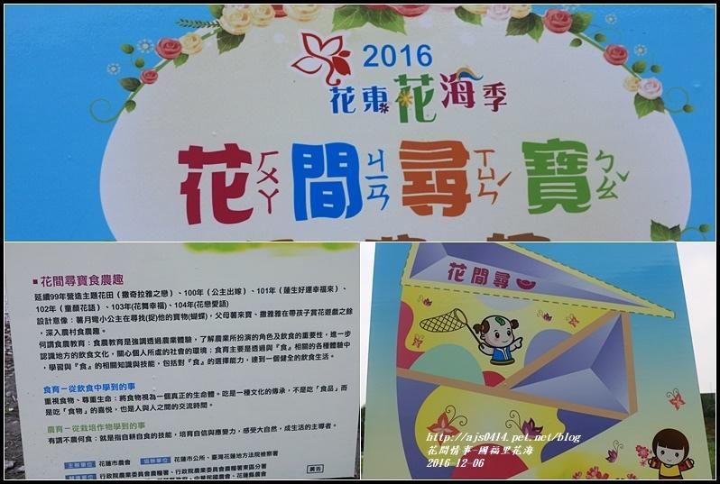 國福里花海-2016-12-03.jpg