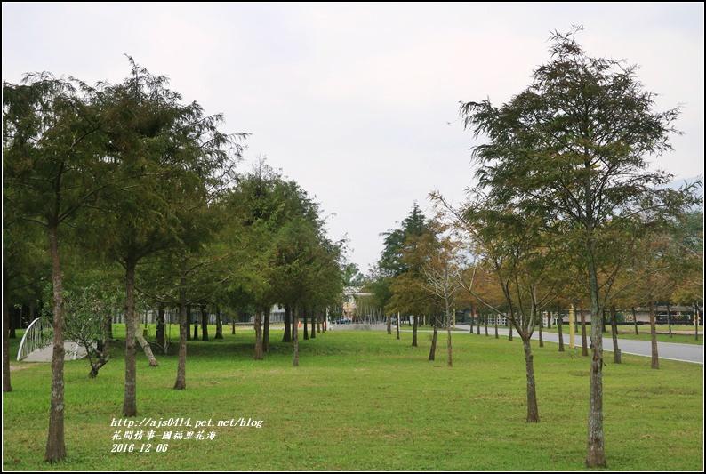 國福里花海-2016-12-33.jpg