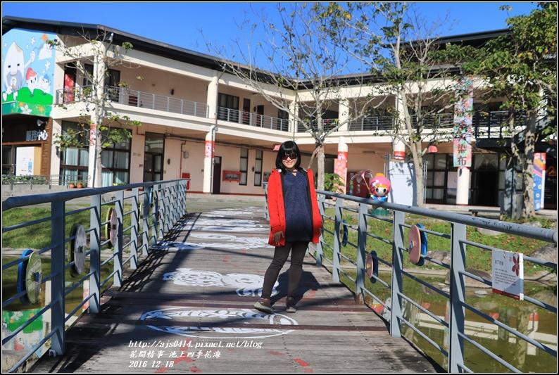 池上四季花海-2016-12-16.jpg