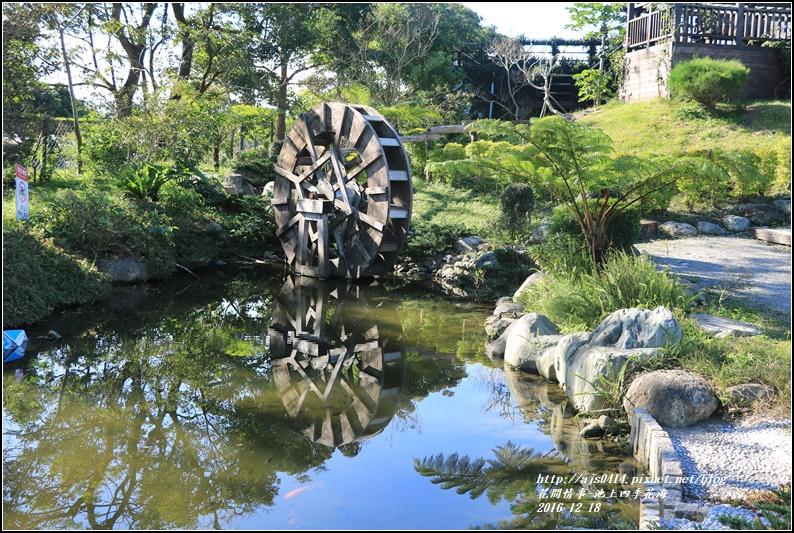 池上四季花海-2016-12-30.jpg