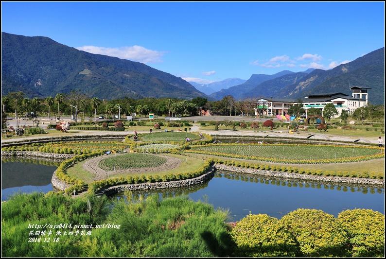 池上四季花海-2016-12-32.jpg