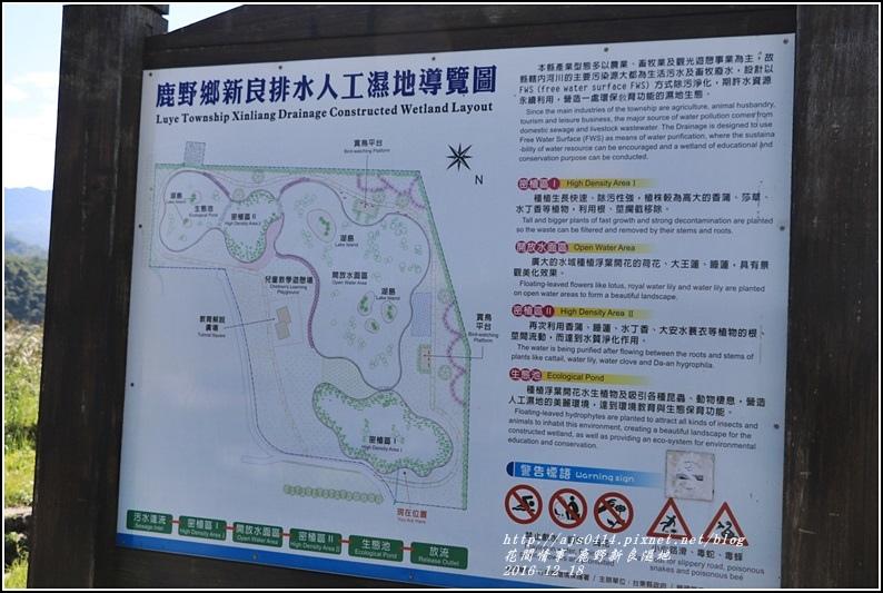 鹿野新良濕地-2016-12-03.jpg