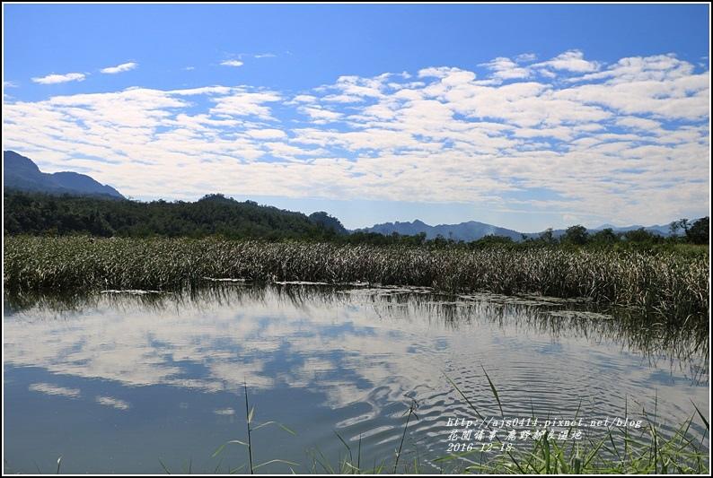 鹿野新良濕地-2016-12-04.jpg