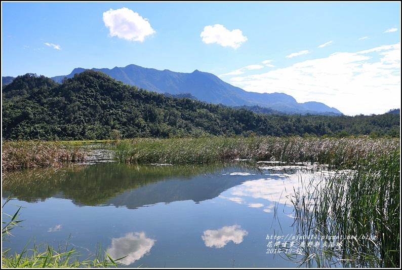 鹿野新良濕地-2016-12-05.jpg