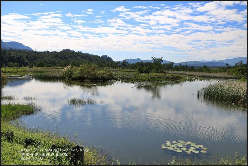 鹿野新良濕地-2016-12-06.jpg