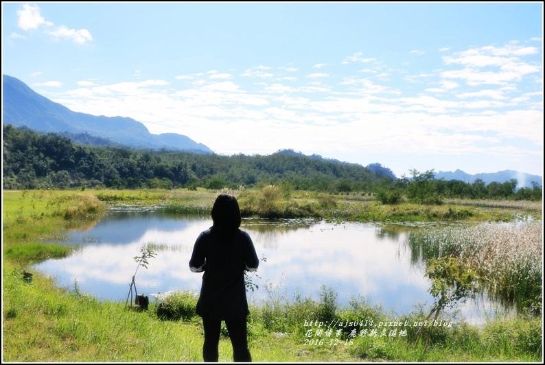 鹿野新良濕地-2016-12-09.jpg