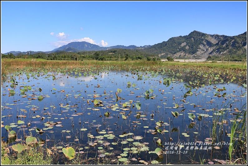 鹿野新良濕地-2016-12-12.jpg