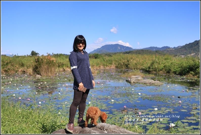 鹿野新良濕地-2016-12-17.jpg