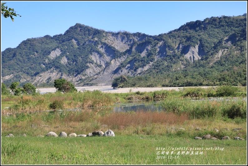 鹿野新良濕地-2016-12-23.jpg