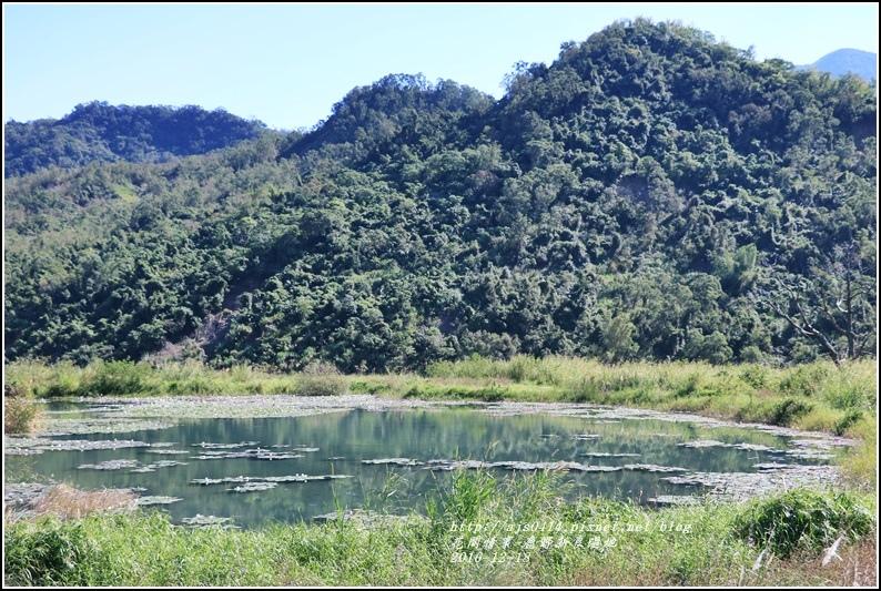 鹿野新良濕地-2016-12-24.jpg