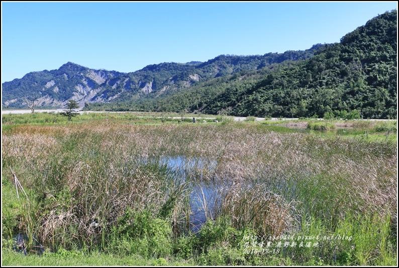 鹿野新良濕地-2016-12-29.jpg