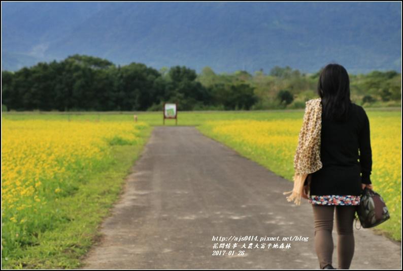 大農大富平地森林-2017-01-13.jpg