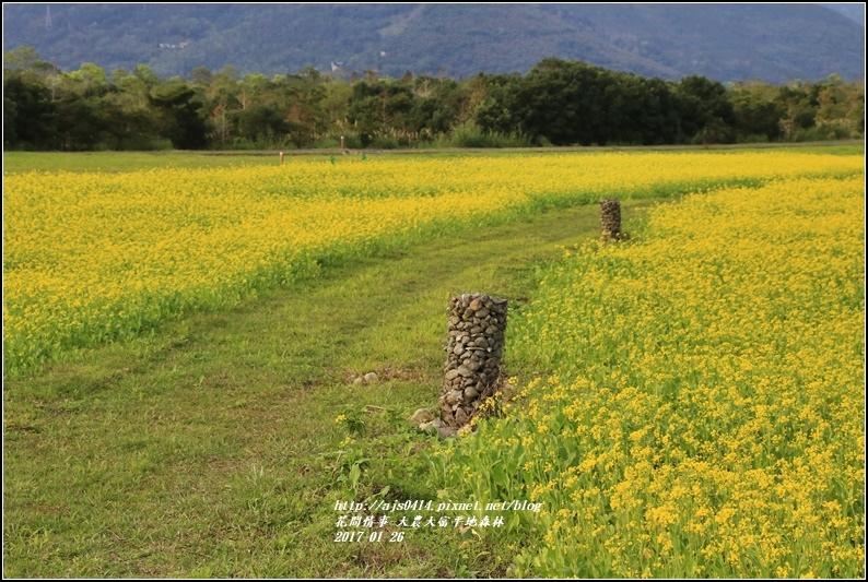 大農大富平地森林-2017-01-32.jpg