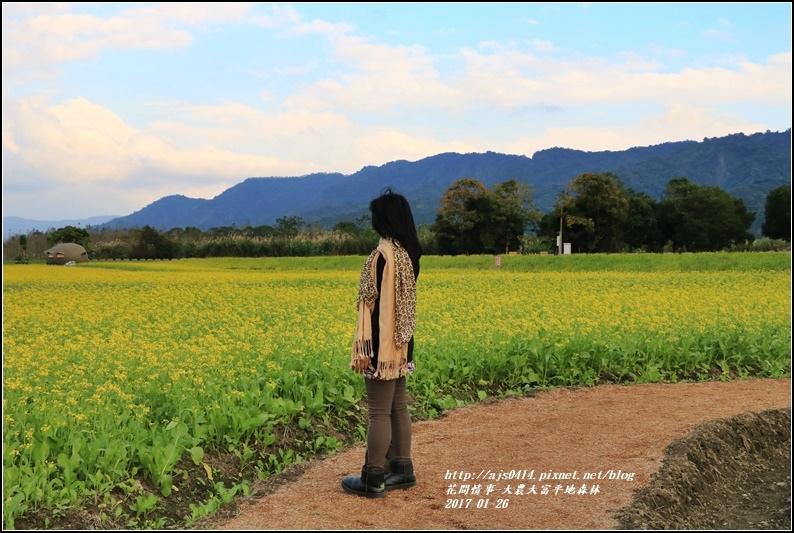 大農大富平地森林-2017-01-48.jpg
