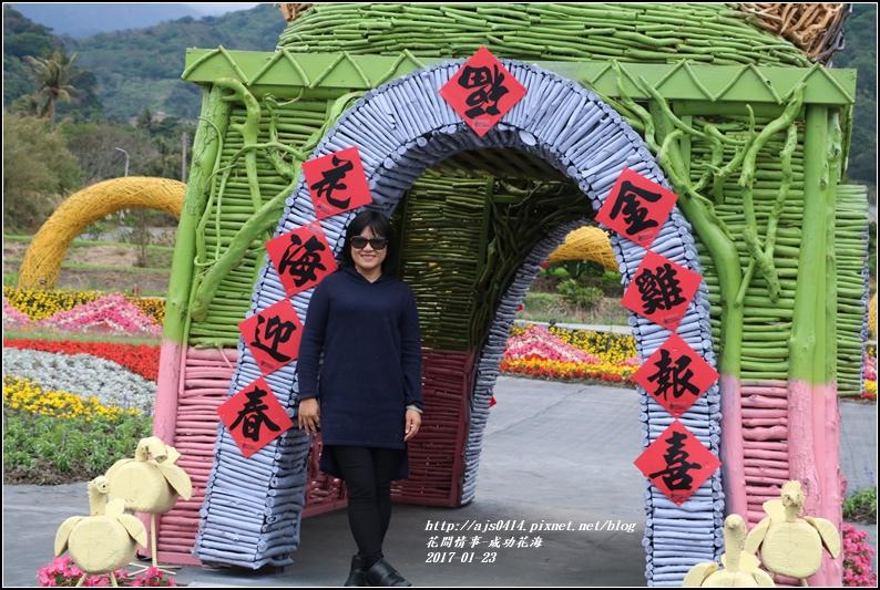 成功花海-2017-01-12.jpg
