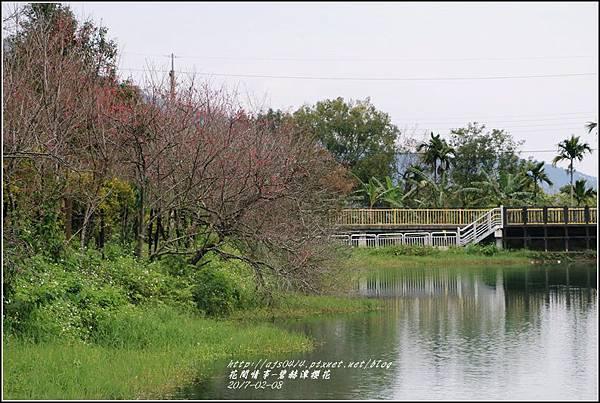 碧赫潭櫻花-2017-01-06.jpg