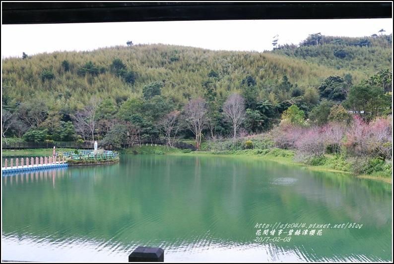 碧赫潭櫻花-2017-01-14.jpg