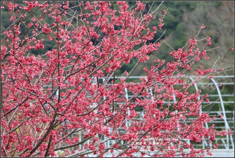 西寶國小-2017-02-14.jpg