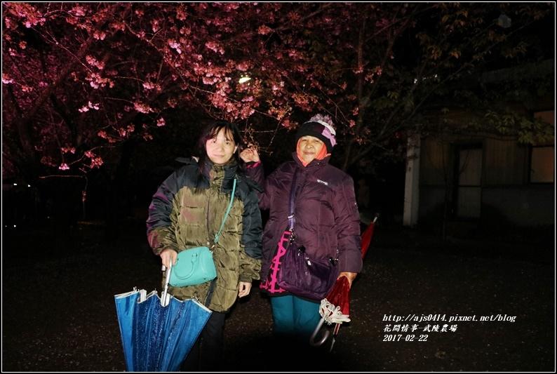 武陵農場夜櫻-2017-02-05.jpg