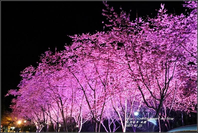 武陵農場夜櫻-2017-02-06.jpg