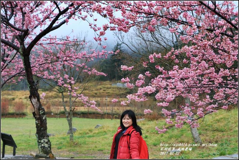 武陵農場營區-2017-02-26.jpg