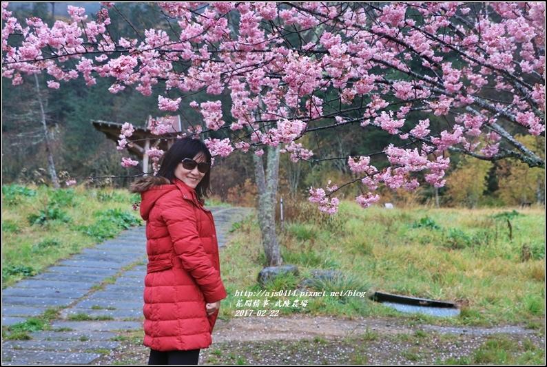 武陵農場營區-2017-02-41.jpg