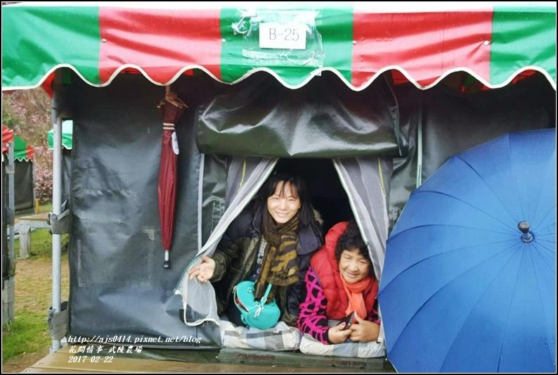 武陵農場營區-2017-02-46.jpg