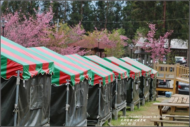 武陵農場營區-2017-02-47.jpg