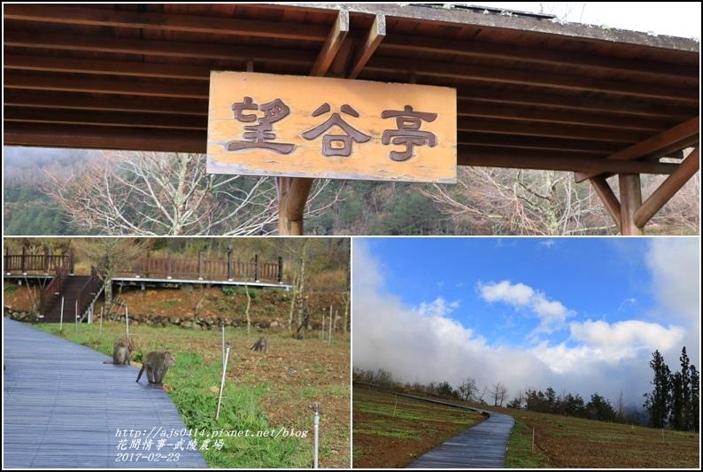 武陵農場巡櫻-2017-02-06.jpg