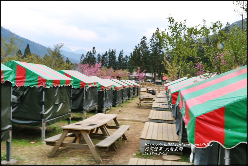 武陵農場露營區-2017-02-04.jpg