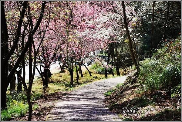 武陵農場巡櫻-2017-02-108.jpg