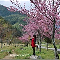 武陵農場巡櫻-2017-02-145.jpg