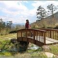武陵農場巡櫻-2017-02-156.jpg